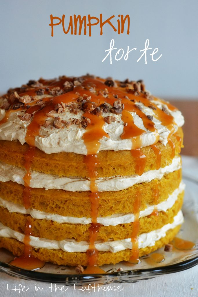 pumpkin-torte1