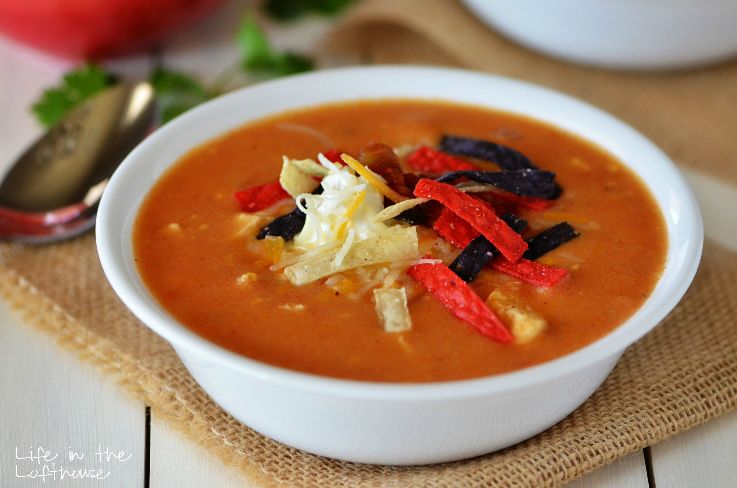 Chicken_Enchilada_Soup_2_LifeInTheLofthouse