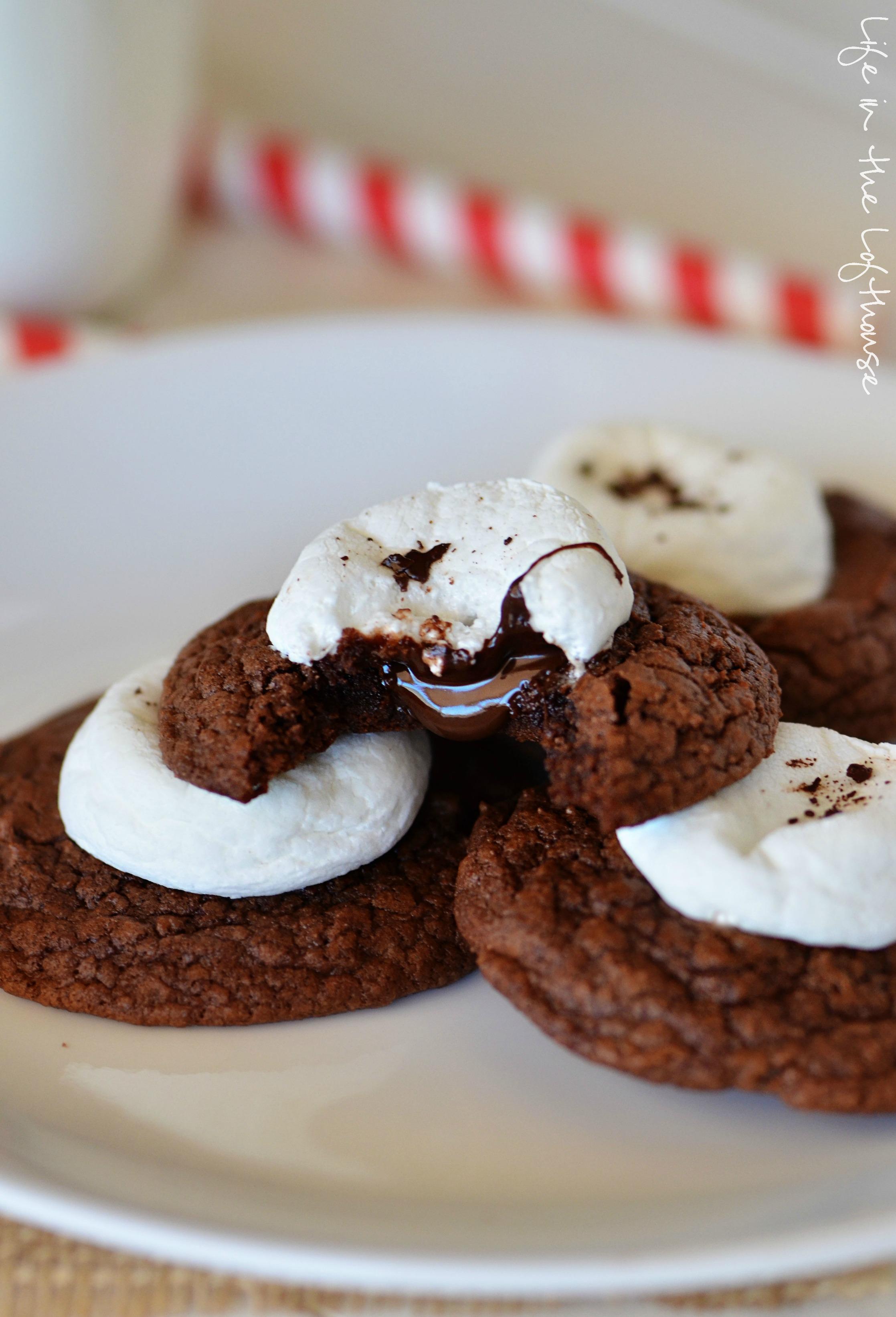 Cocoa cookie bars recipes