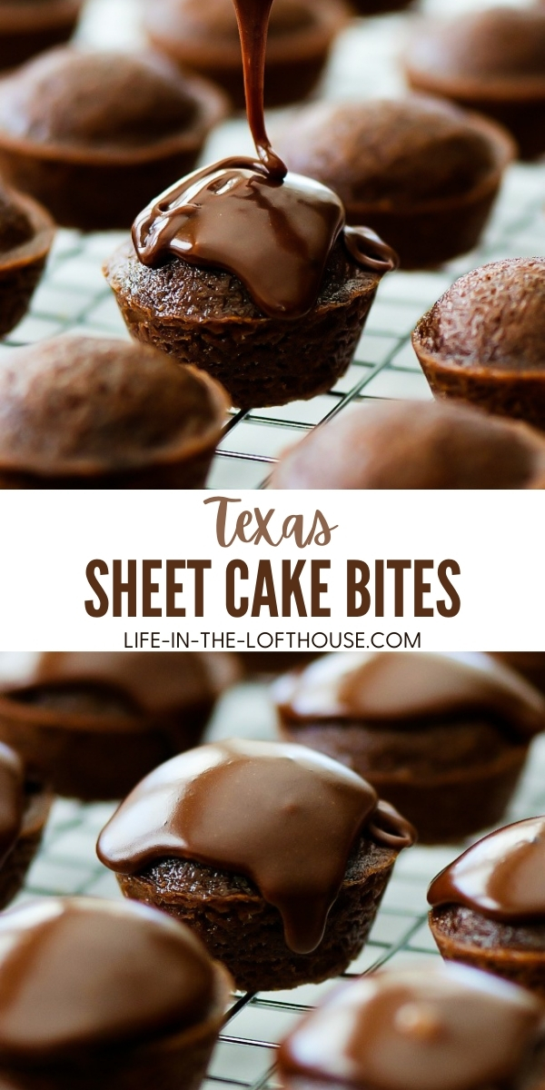 Texas sheet cake bites are delicious mini versions of traditional Texas sheet cake with fudge frosting. Life-in-the-Lofthouse.com