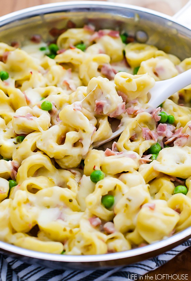 Ham, peas and a creamy sauce over cheese-filled tortellini. Life-in-the-Lofthouse.com