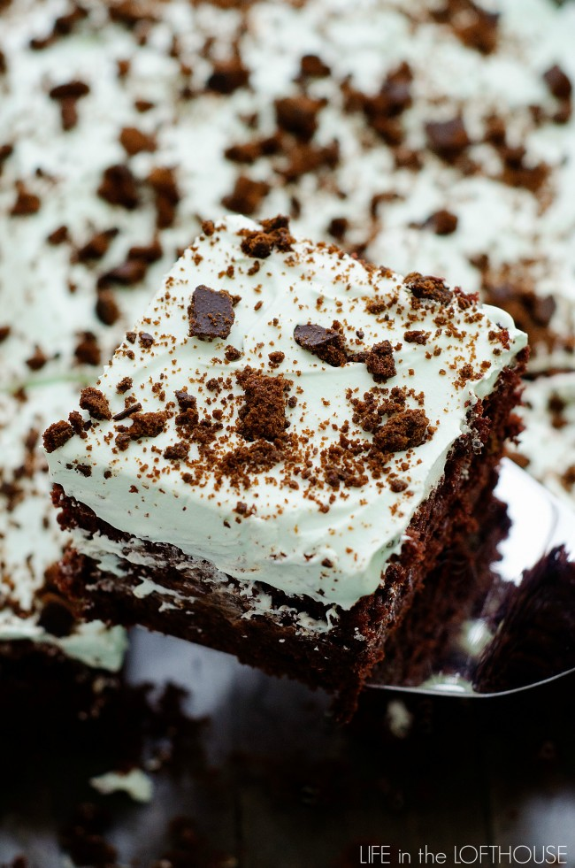 Thin mint chocolate poke cake life in the lofthouse for Life in the lofthouse
