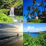 Adventures in Maui!