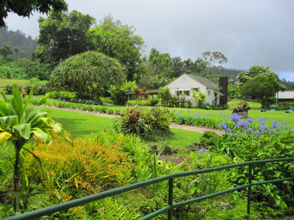 Maui_Winery1