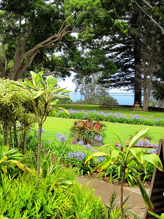 Maui_Winery4