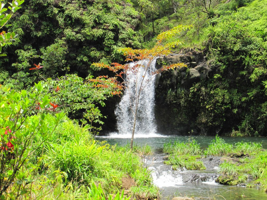 Road_to_Hana_Waterfall
