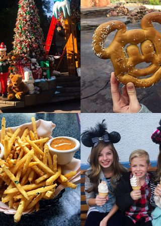 Adventures in Disneyland!