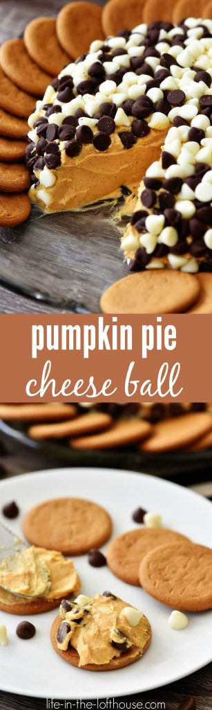 Pumpkin pie cheese ball is a creamy, delicious cheese ball full of pumpkin flavor and covered in white and chocolate chips. Life-in-the-Lofthouse.com