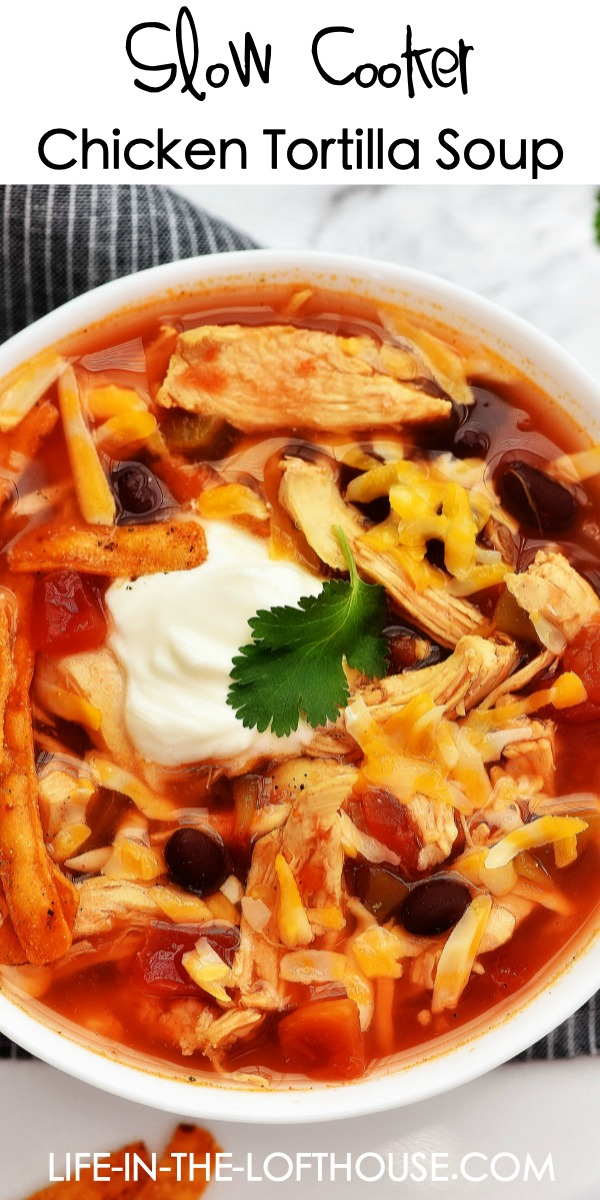 Slow Cooker Chicken Tortilla Soup has Mexican flavors with chicken, onion, tomato and diced green chilies. Life-in-the-Lofthouse.com