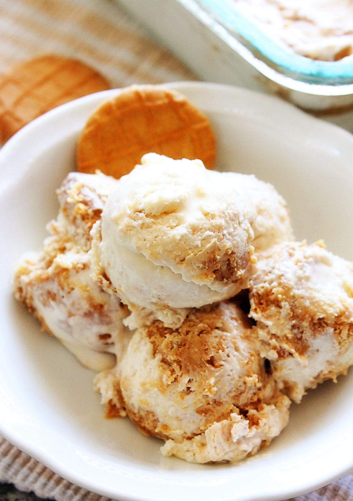Peanut Butter Cookie Ice Cream