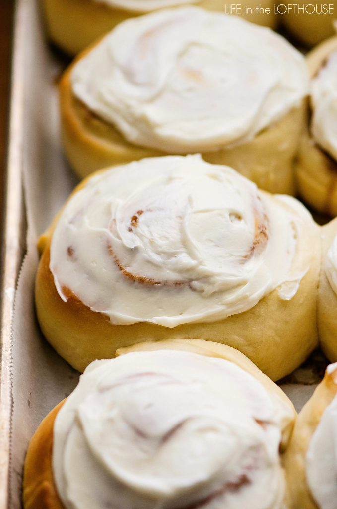The most perfect cinnamon rolls with cream cheese frosting.