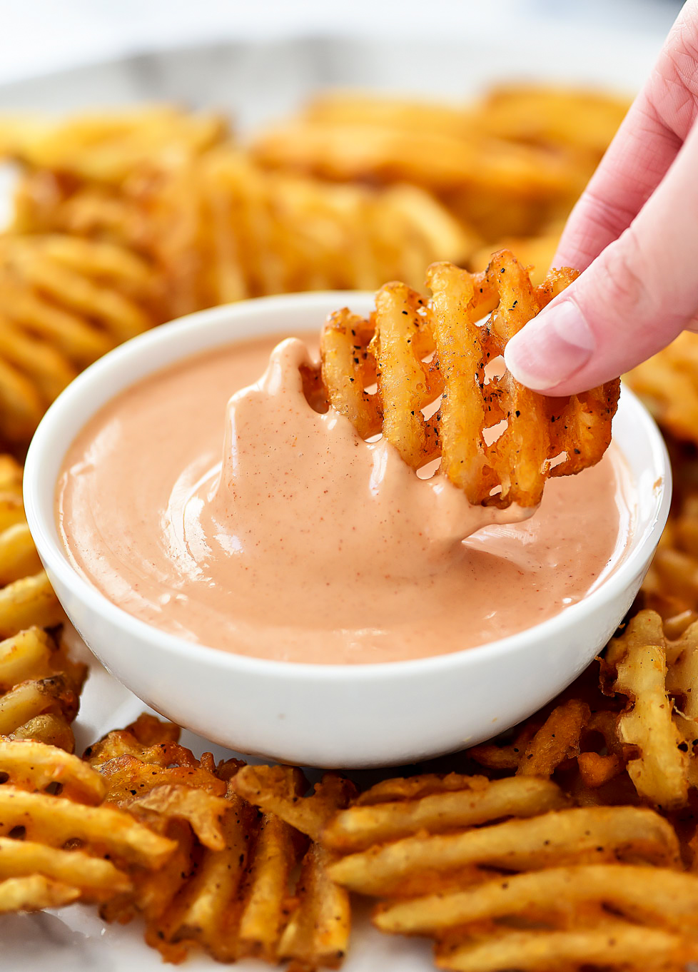 Utah Fry sauce is a French fry sauce made with ketchup, mayonnaise and other spices. Life-in-the-Lofthouse.com