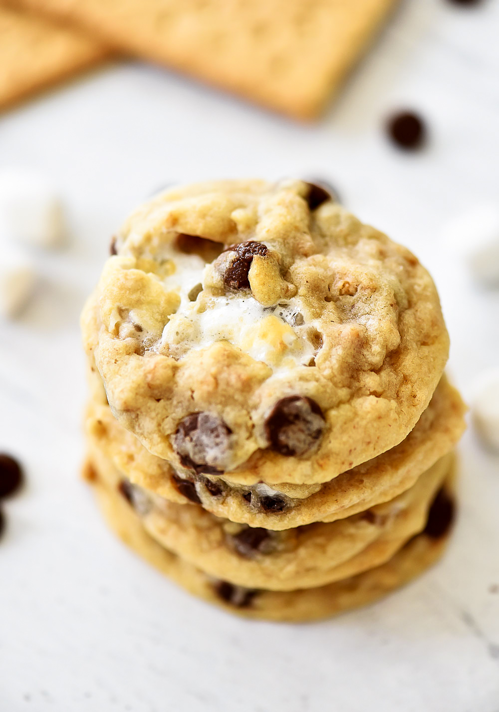Chocolate Chip Cookies filled with marshmallow and graham cracker crumbs. Life-in-the-Lofthouse.com