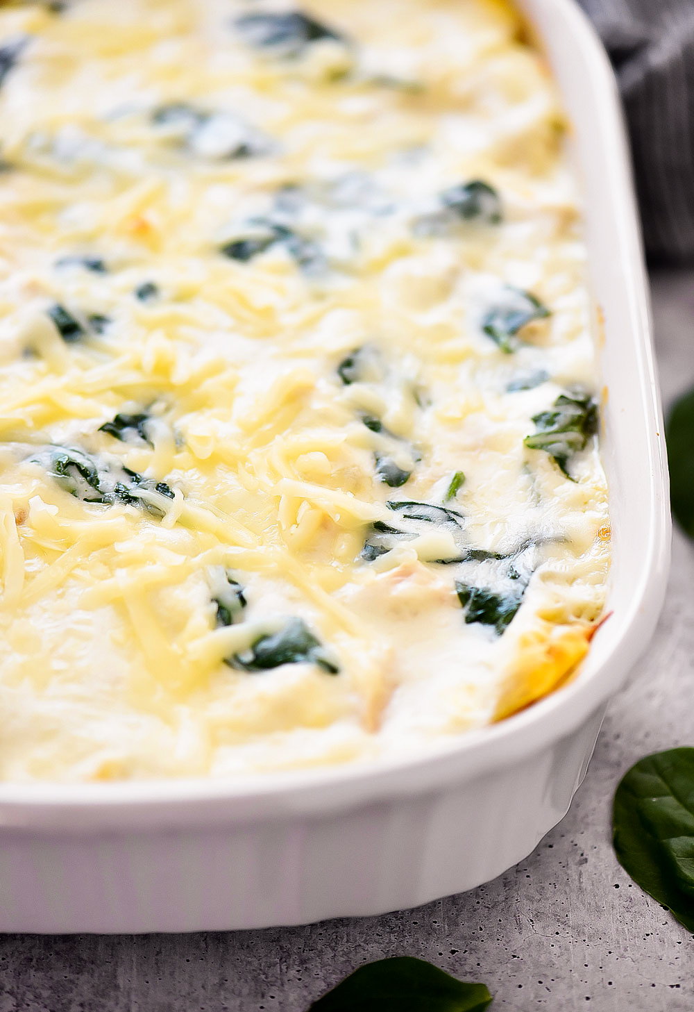 A white cheese lasagna with layers of noodles, white cheese sauce, Mozzarella cheese and spinach leaves. Life-in-the-Lofthouse.com
